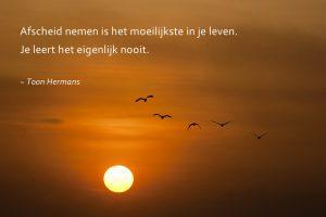 quote toon hermans